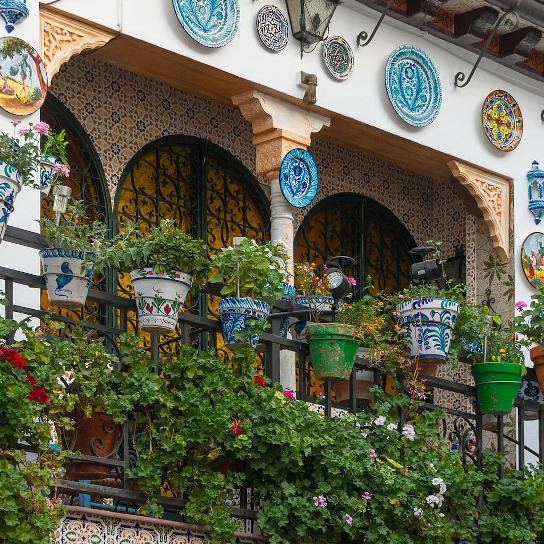 Tellerwand in Granada